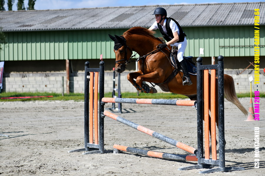 /photos/Gallery/Sports_equestres/CSOM06 - PRO 64.JPG